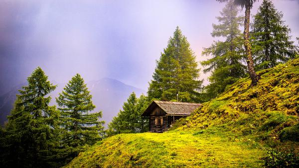 domki ustrzyki dolne