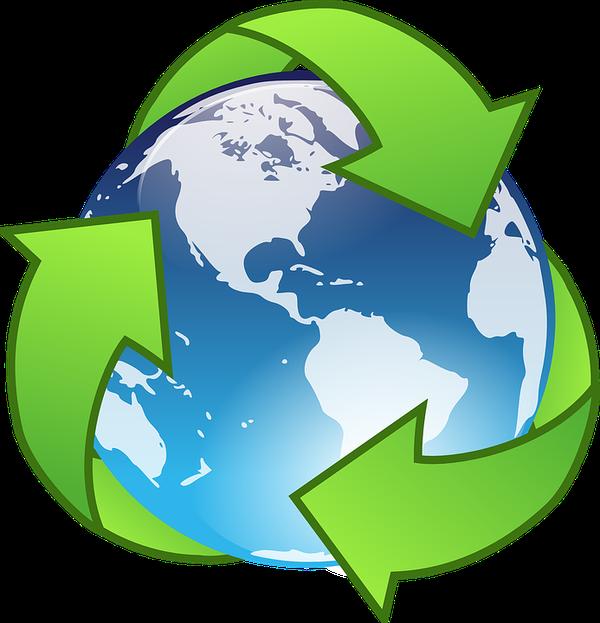 opakowania jednorazowe ekologiczne