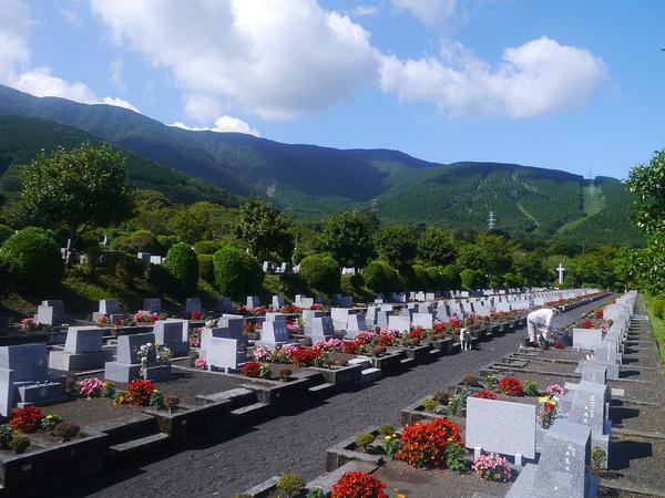 kremacje zwłok warszawa